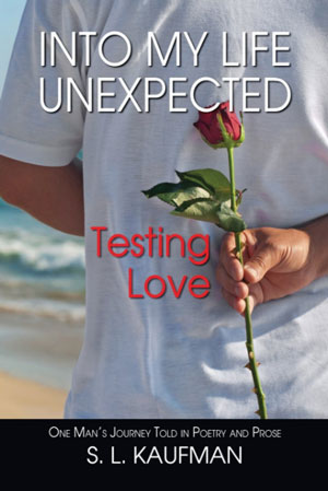 testing-love-the-book